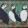 Puffins on Green