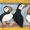 Puffin Lineup
